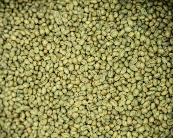 parzenie-kawy-Specialty